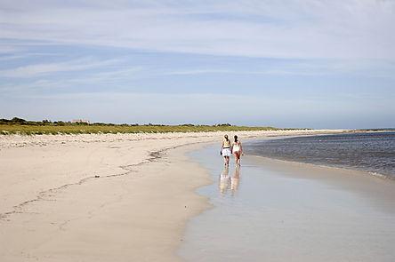 Beachfront Land For Sale Cape Jaffa Anch