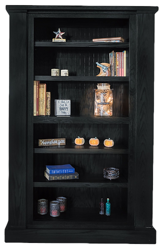 Willa-hide-Book-Case-1-of-4_black_edited.png
