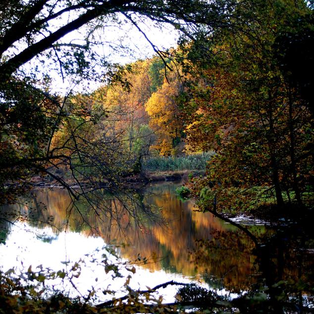 Autumn Foilage Reflection