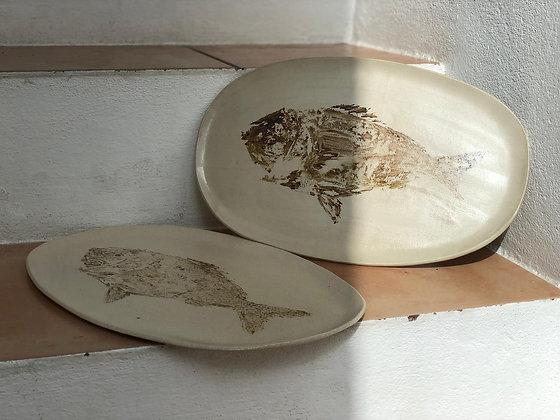 Plato Gyotaku