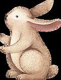 Tekening van het konijn