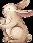 ウサギの描画