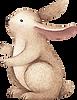 Tavşan Çizim