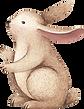 Disegno di coniglio