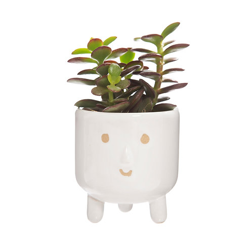 Happy Planter