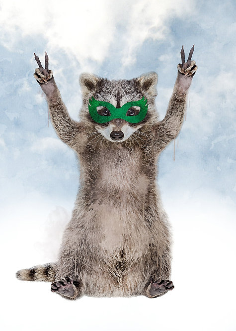 Super Raccoon! - 30x40cm