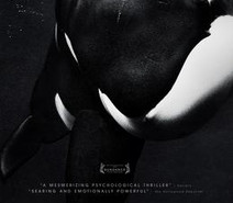 """Blackfish"": The Documentary that ""SeaWorld"" doesnt want you to watch."