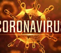 ¿Por qué aún no se crea una vacuna para prevenir el COVID-19?