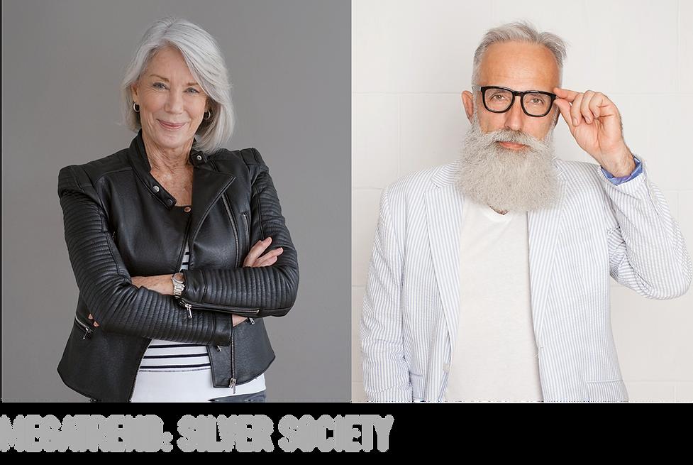 Megatrend Silver Society