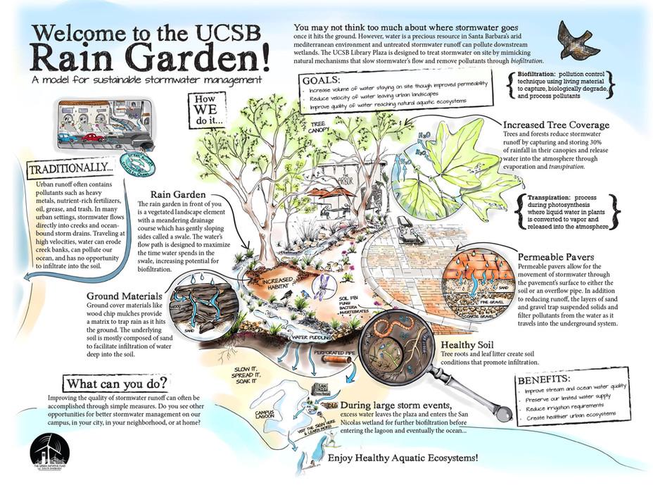 UCSB Rain Garden