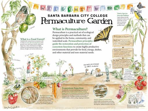 SBCC Permacuture Garden