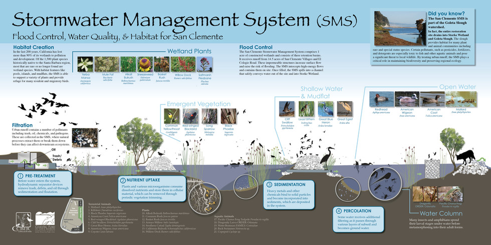 Stormwater Management System