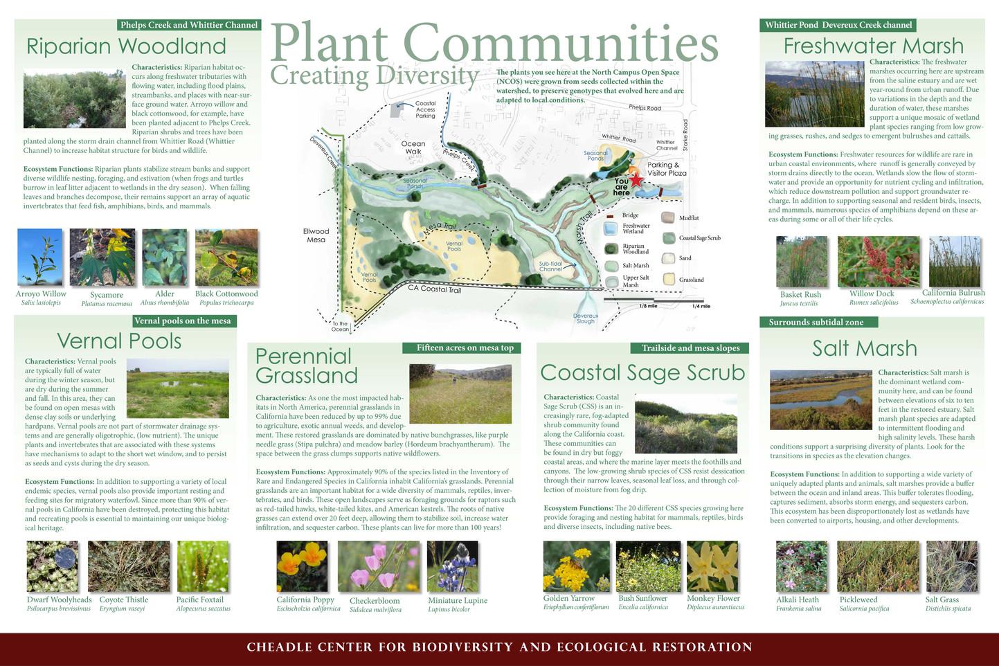 plant communnities_sm10.jpg