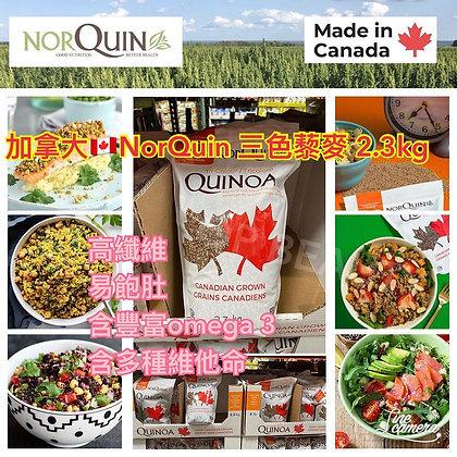 加拿大NorQuin三色藜麥 勁量裝2.3kg