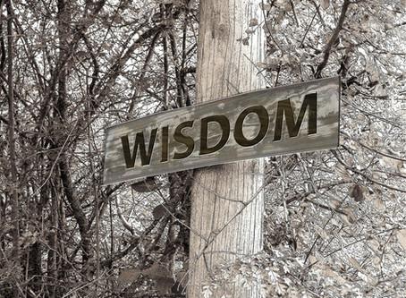 Embrace & Pursue Wisdom