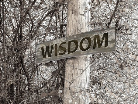 Embrace & Pursue Wisdom