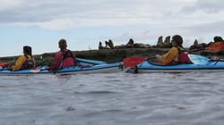 KayakPuertopiramides.JPG