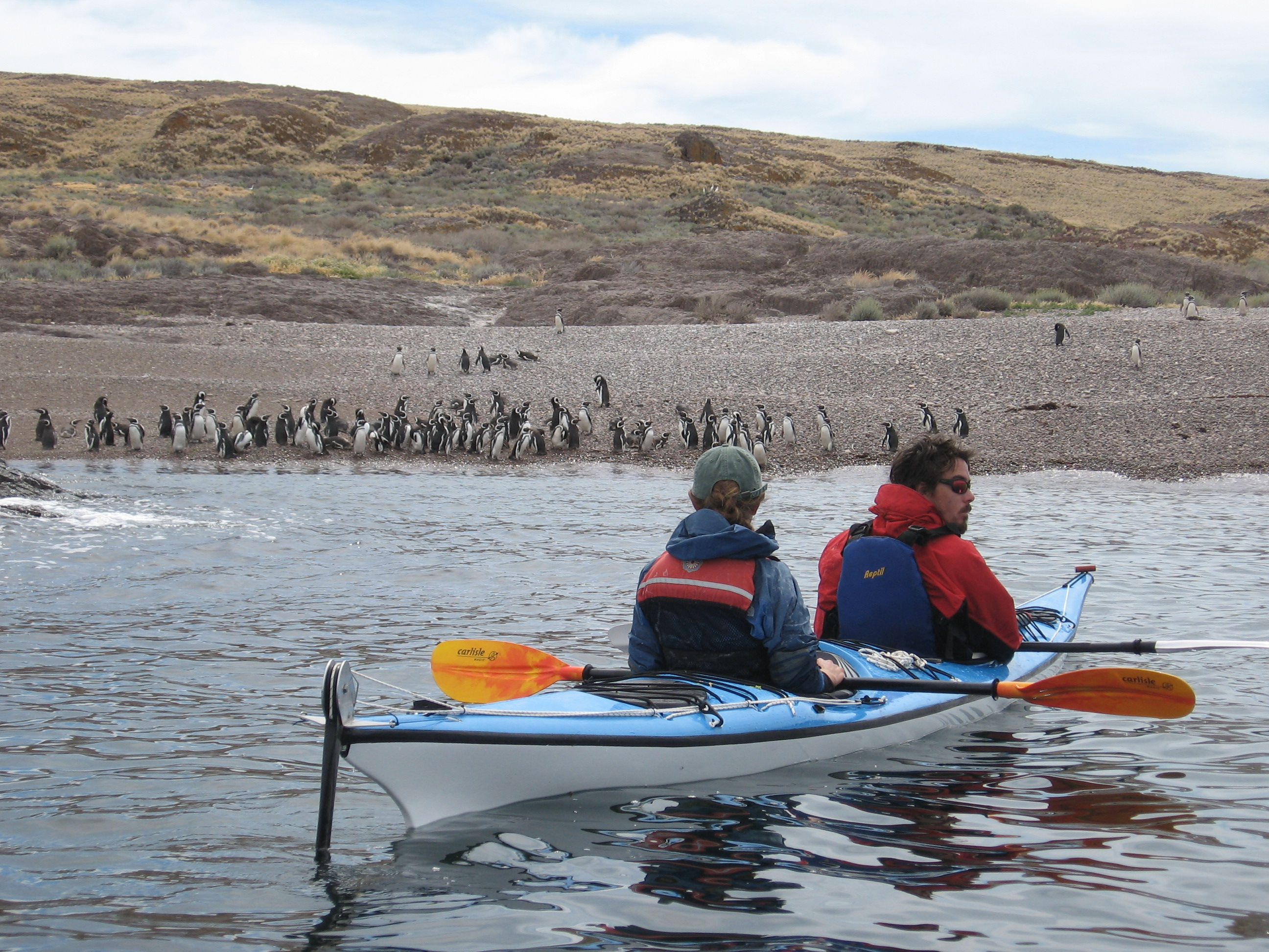 Kayak&PenguinsPatagoniaAutral.jpg