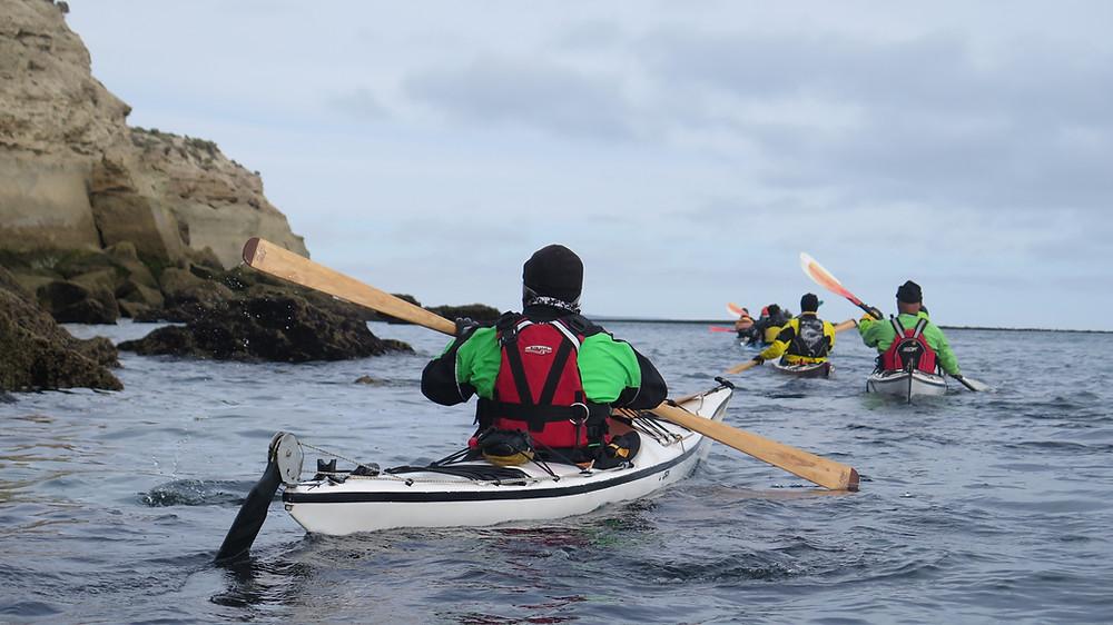 Kayak de mar Puerto Piramides