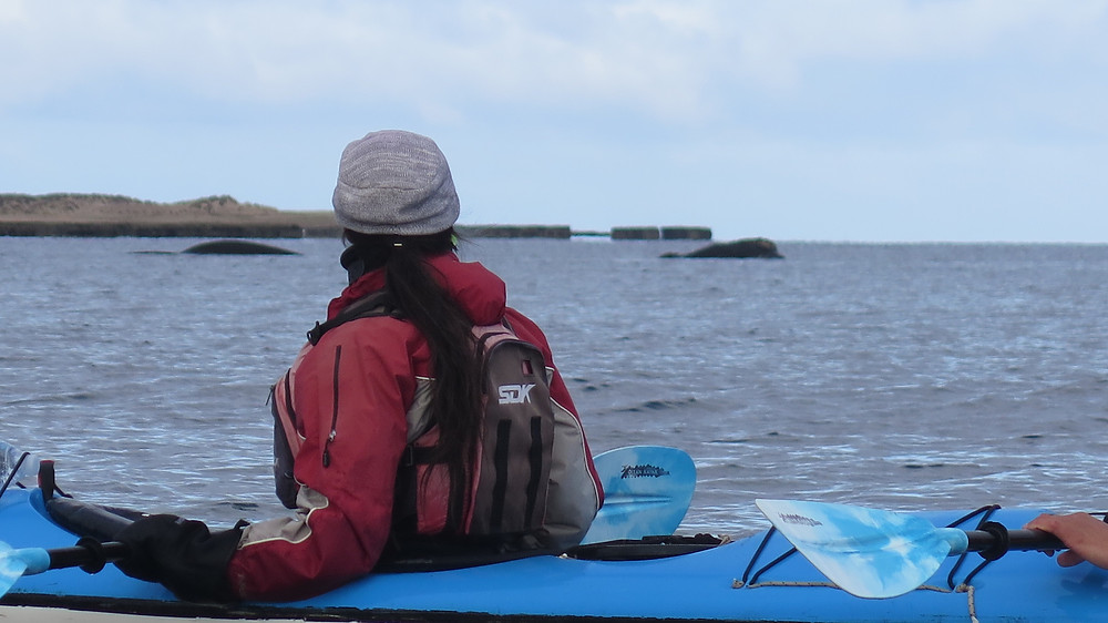Kayak Temporada de ballenas Puerto Piramides