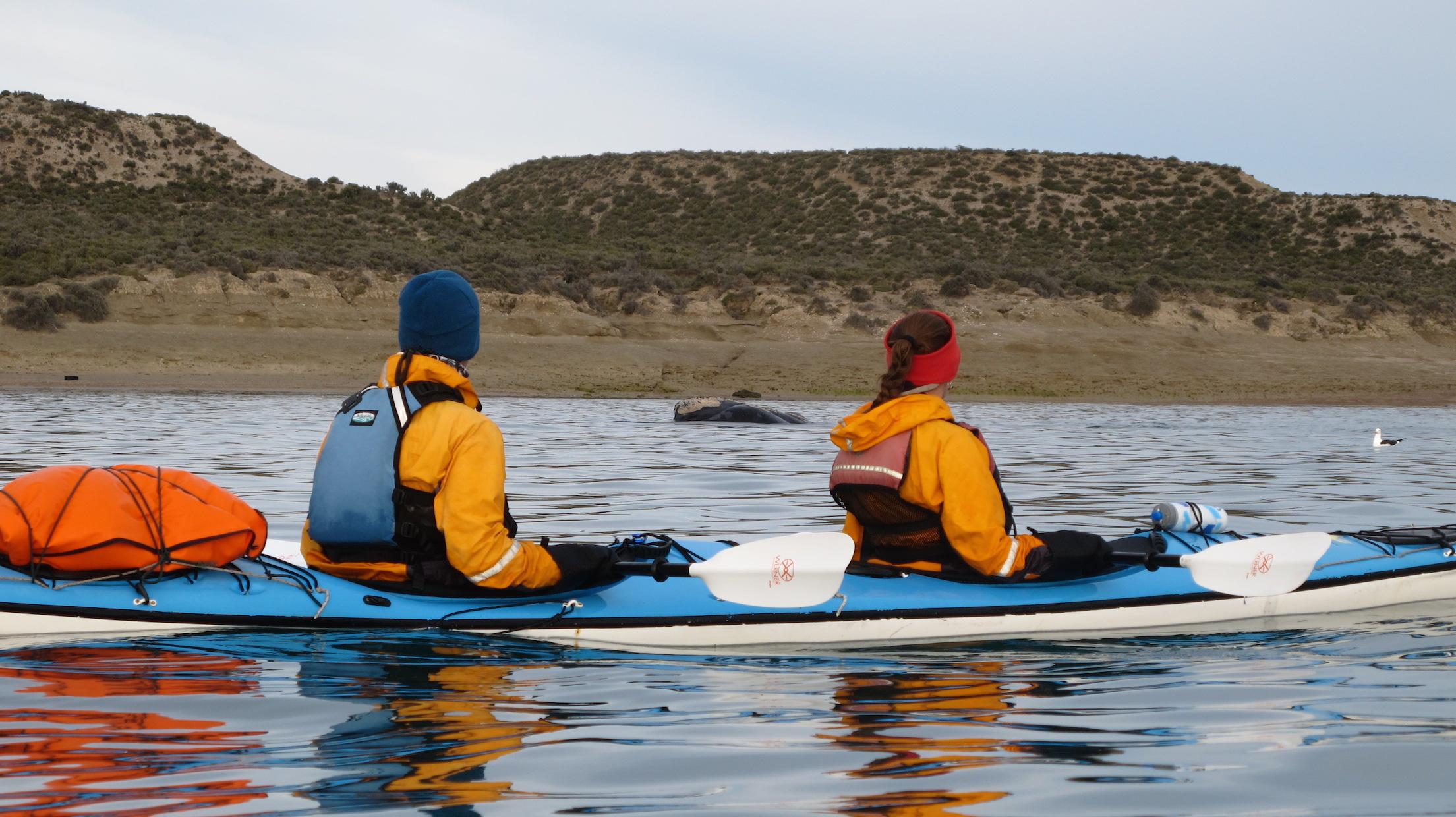 Kayakingandwhalewatchinginpatagonia.JPG