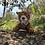 Thumbnail: TIGRE DE BENGALA (22cm)