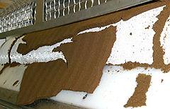 Sludge leaving from the belt filter press