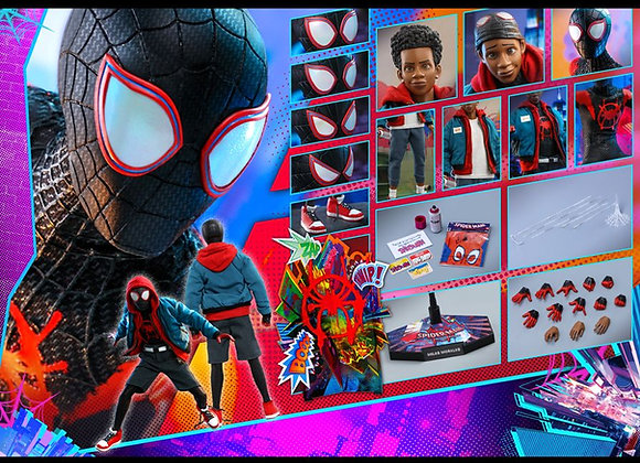 Hot Toys MMS567 SPIDER-MAN: INTO THE SPIDER-VERSE 1/6 MILES MORALES