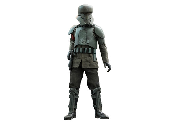 Hot Toys TMS030 STAR WARS: THE MANDALORIAN 1/6 TRANSPORT TROOPER Pre-order