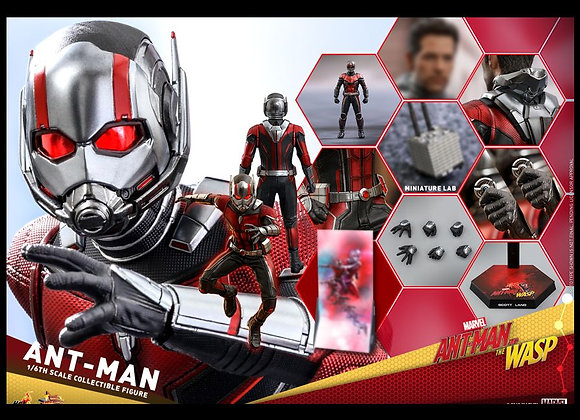 Hot Toys MMS497 ANT-MAN AND THE WASP 1/6 ANT-MAN