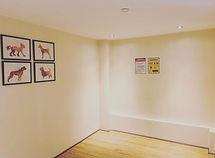 Treatment Room Pic 2.jpg