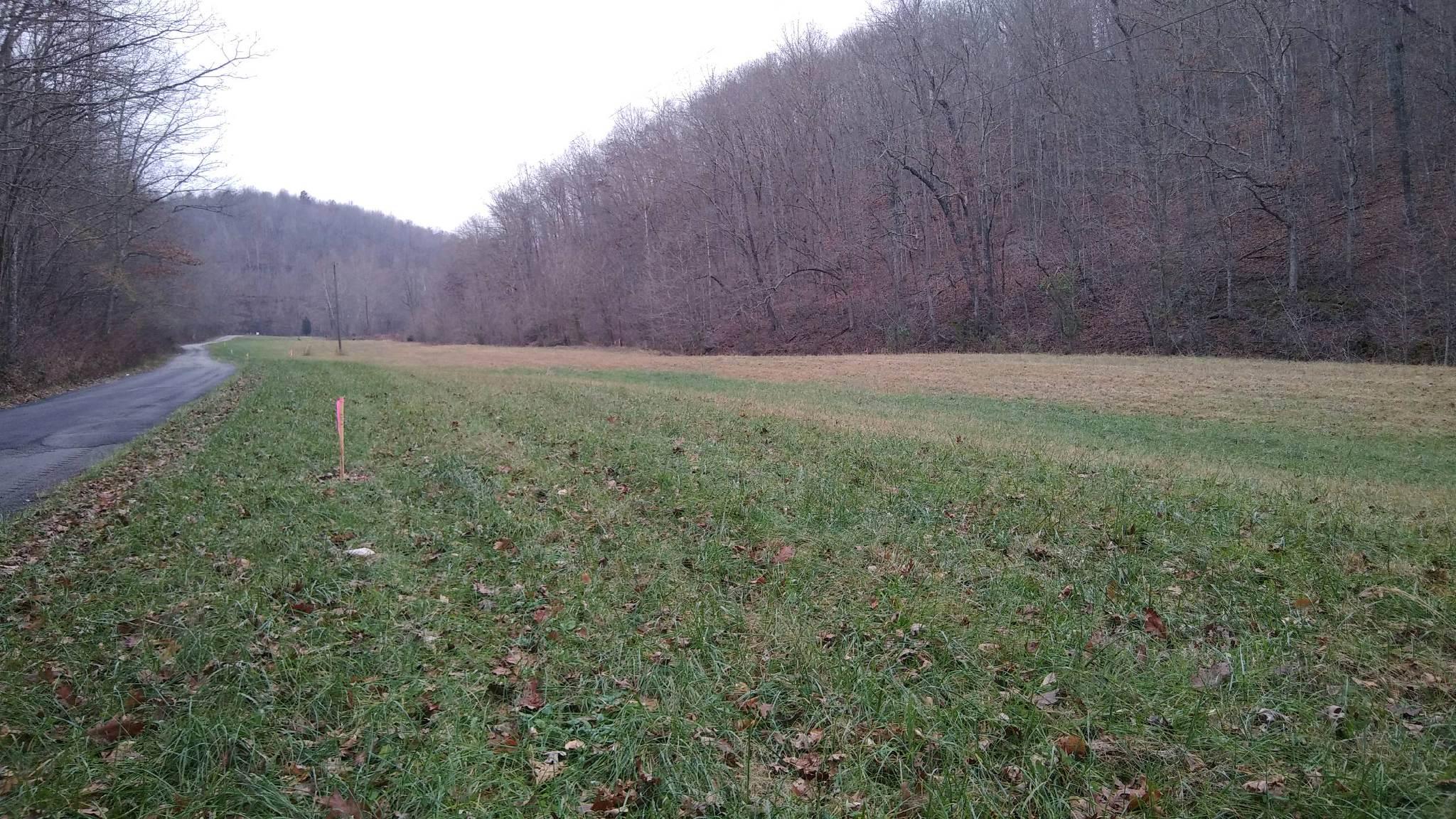 Boone Branch