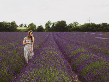 Lavender Farm Touring