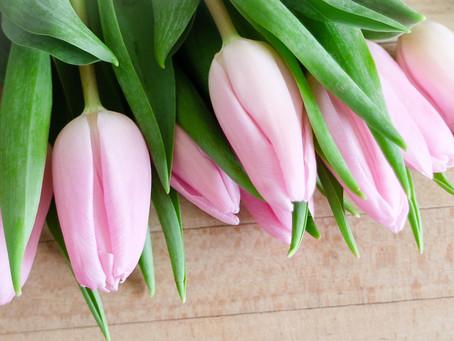 Hellooo Spring!