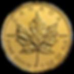 CDN_MAPLE.transparent.png