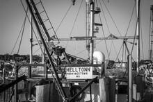 Provincetown Photo Album