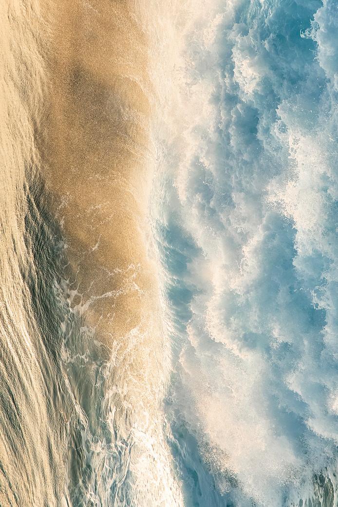 海のものとも山のものともつかない