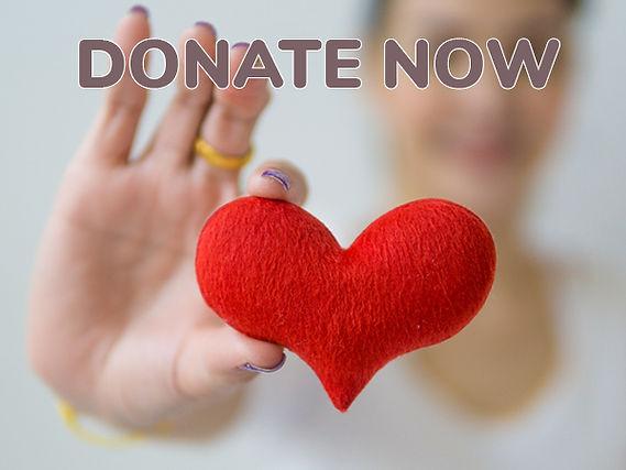 Website-DonateNow.jpg