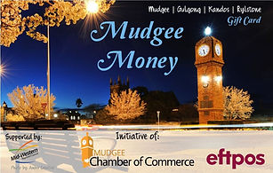 Mudgee Money