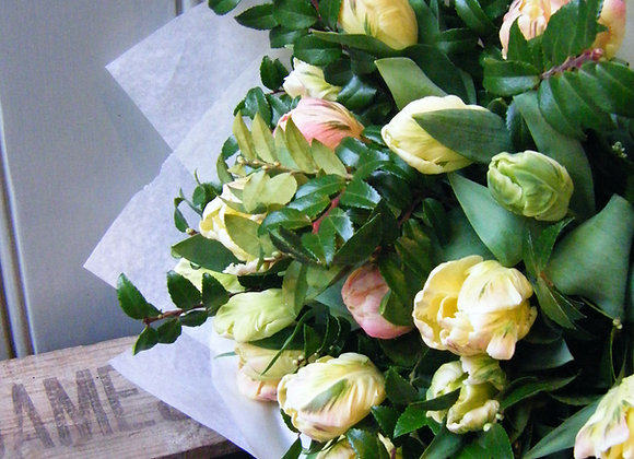bouquet of Tulips and lush green foliage
