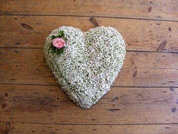 gyp heart