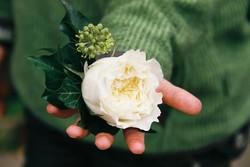 David Austin buttonhole