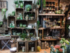 Flower shop  Worcester