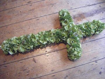 hydrangea a nd poppy heads...jpg