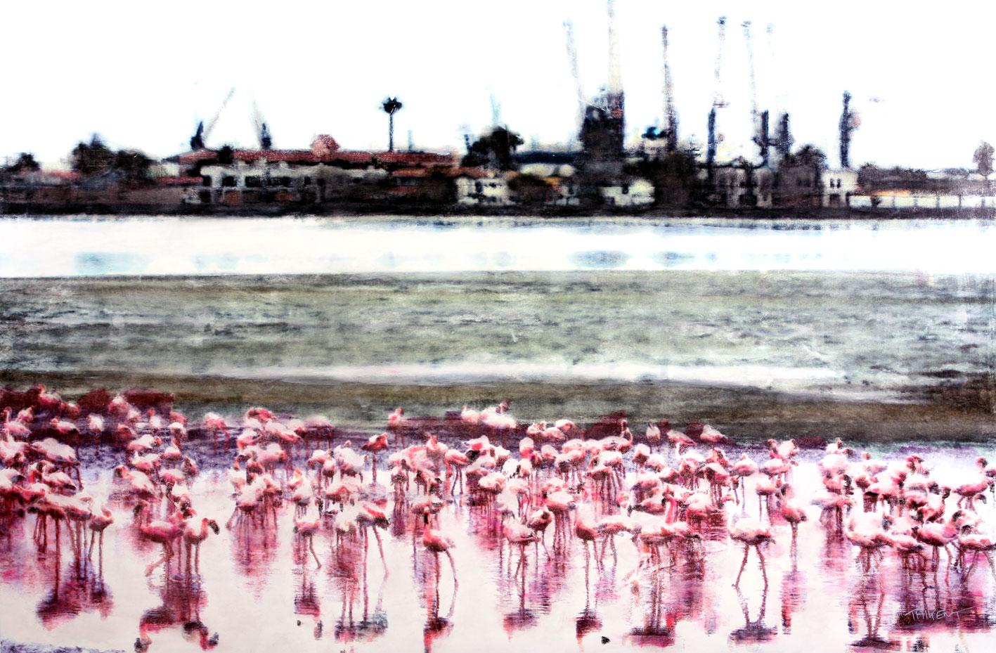 les flamingos