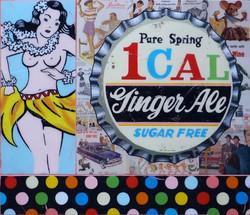 """hula / ginger ale"""