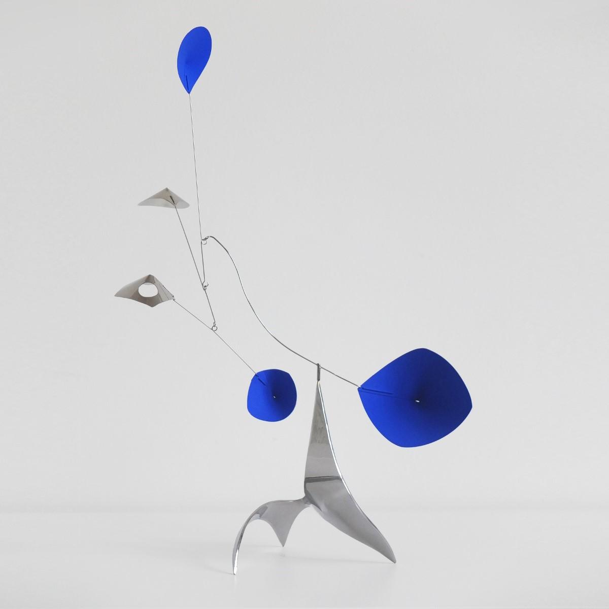 stabile inox bleu - 1/1