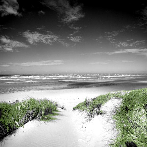 """dune to sea"""