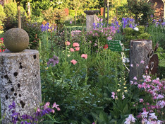 Juni 2019 Offener Garten 9. Juni von 11h-17h