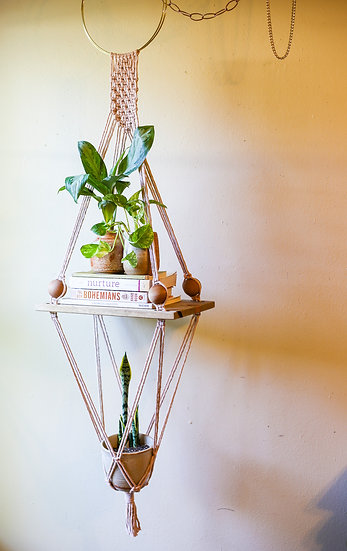 STELLA SHORT    Shelf Planter Combo